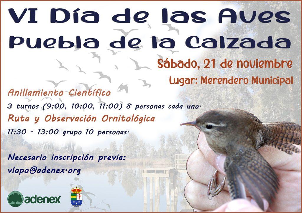 Cartel_VI_Da_de_las_Aves_Puebla